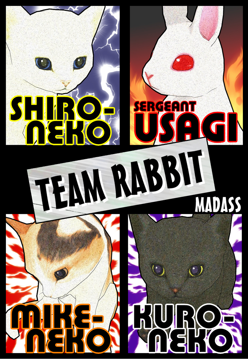 TEAM RABBIT